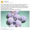 04 Video op FB (Bijenkorf)